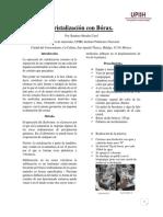 Cristalización con Bórax.docx