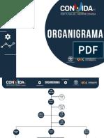 Estructura Organica Nueva Vida