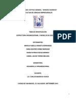 Estructura Organizacional y Modelos de Desarrollo