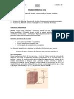 422676347 Practico 1 Mineralogia