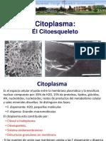 7 Citoplasma y citoesqueleto.ppt