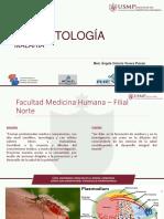 7.- Principales Coccidios Tisulares Pasmodium - Copia (1)