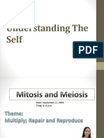 Mitosis and Meiosis Report-1