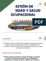 REGLAMENTO SEGURIDAD Y SALUD OCUPACIONAL EN LAS BAMBAS.ppt