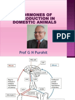 Lecture 2 Hormones of Reproduction in Domestic Animals