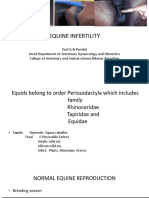 Lecture 14 Equine Infertility