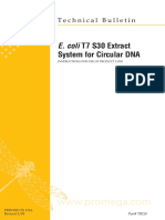 e Coli t7 s30 Extract System for Circular Dna Protocol