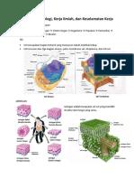 materi phb biologi.docx