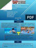 piscinas ppt