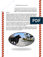 Reseña Historica de Acari