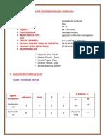 analisis de verdura.docx