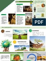 Etica Ambiental LA MORAL SOCIAL
