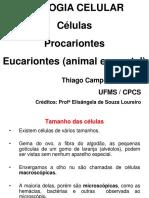 Aula-02_Biologia_celular.pdf