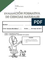 Evaluacion Formativa Ciencias Naturales Unidad 2, Lleccion 1 Terceros