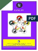 Apostila - Zang Fu