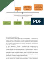 mapa tesis.docx
