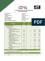 COSTO ZANAHORIA TRADICIONAL.pdf