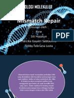 mismatch repair fix.ppt