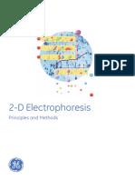 2 d Electrophoresis