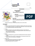 Activity 3 Structure of a Plant Cell