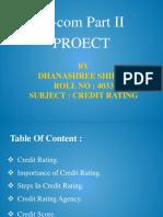 Dhanashree Shirke Credit Rating.pptx