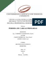 Informe_fluidos Perdida de Carga