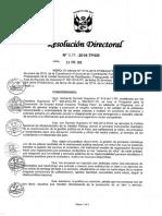 resolucion directorial