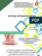 sistema estomatogmatico