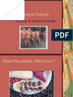The Meaning of Culture.ppt