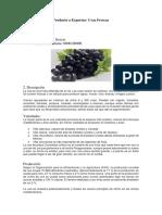 uvas frescas.docx