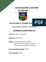 Informe Quimica Organica 8