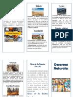 Folleto desastres-naturales.pdf