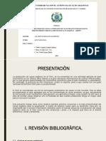 diapositiva de cacao.pptx