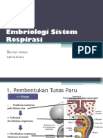 embriologi sistem pernapasan.pptx