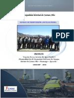 carmen alto pdc.pdf
