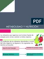6.- METABOLISMO Y NUTRICION.pptx