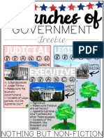 Three Branches of Governemtn