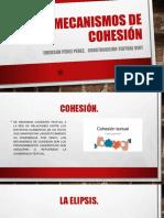 Mecanismos de Cohesión- Emerson Pérez