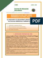 Monografico CREI Num. 5 Respuesta a la Diversidad Cultural Mediante Recursos Didacticos_Material Curricular