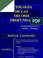 t3. Micosis Profundas (Dr. Requena)