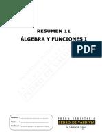 91-Resumen+11+(7_25).pdf