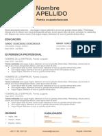 59-curriculum-vitae-personal.docx