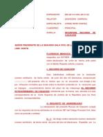 CASACION JULIO UNION DE  HECHO.docx