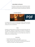 DESASTRE NATURAL