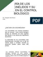 Cria de Catarinas o Coccinélidos y Su Papel en El Control