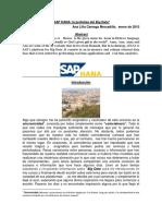 CAREAGA HANA la profeta del Big Data ENERO 2015.pdf