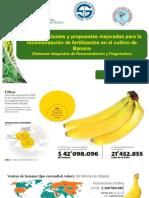 Sistema de recomendacion DRIS Diego Villaseñor.pdf