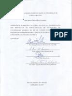 2007091701.pdf