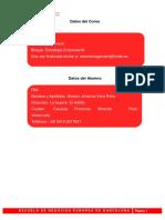 Trabajo Final - Estrategia Empresarial (2) SHARON VERA