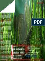 Afiche Diplomado en Acuarios